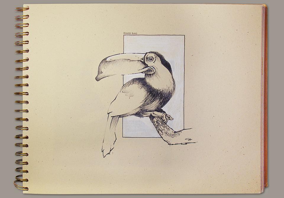 sketchbook-honkerbird.jpg