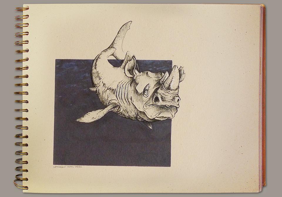 sketchbook-hornshark.jpg