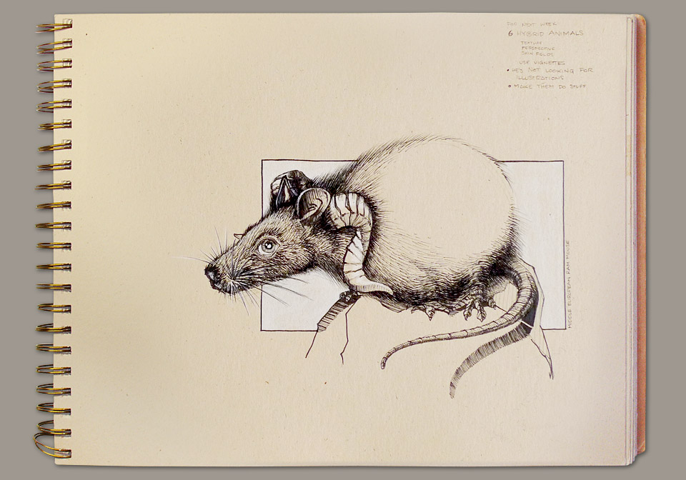 sketchbook-ram-mouse.jpg